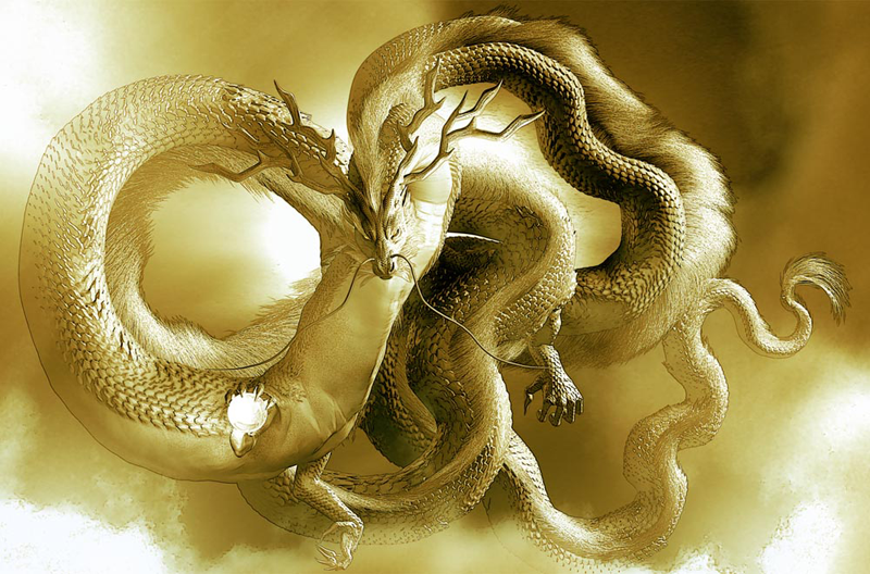 龍の絵 雲龍