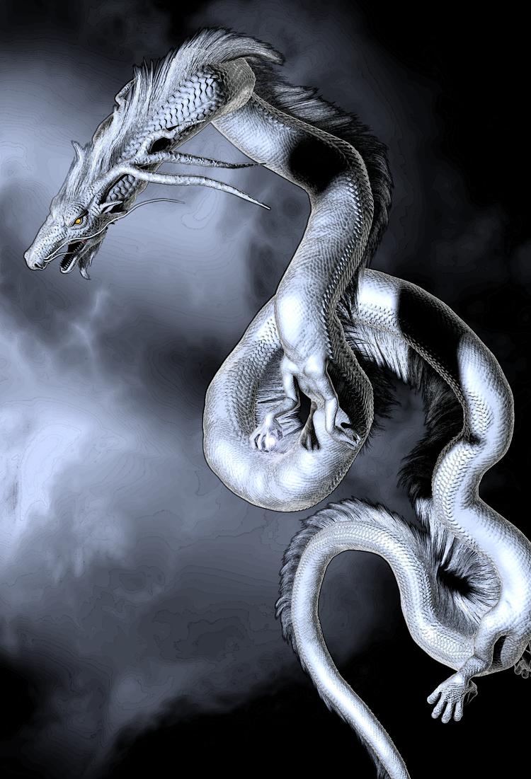 龍の絵 白龍