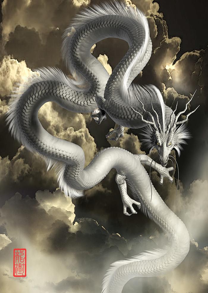 龍の絵「白龍4」