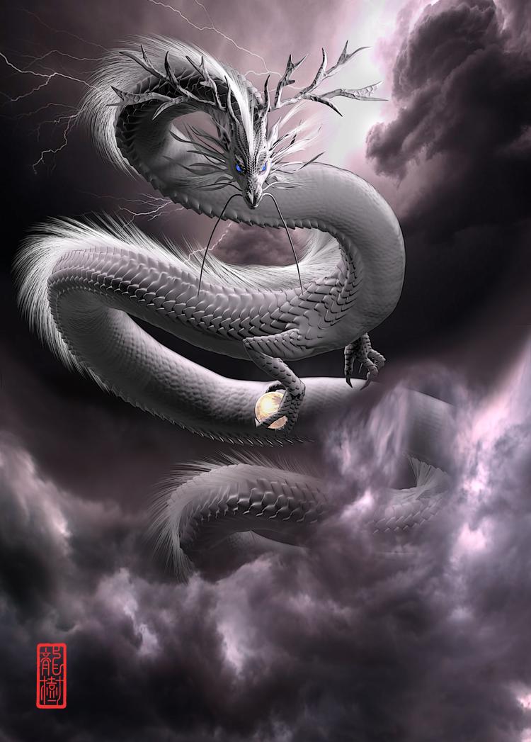 龍の絵「白龍5」