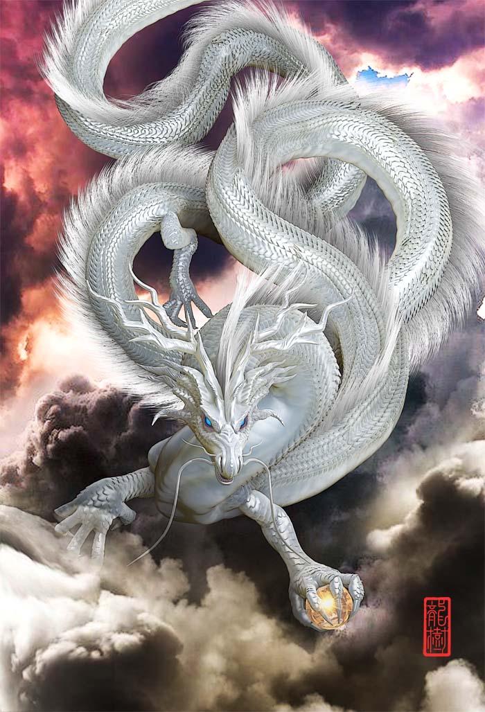 龍の絵 雲龍5