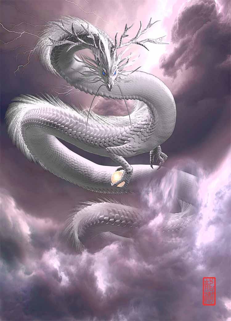龍の絵 白龍3