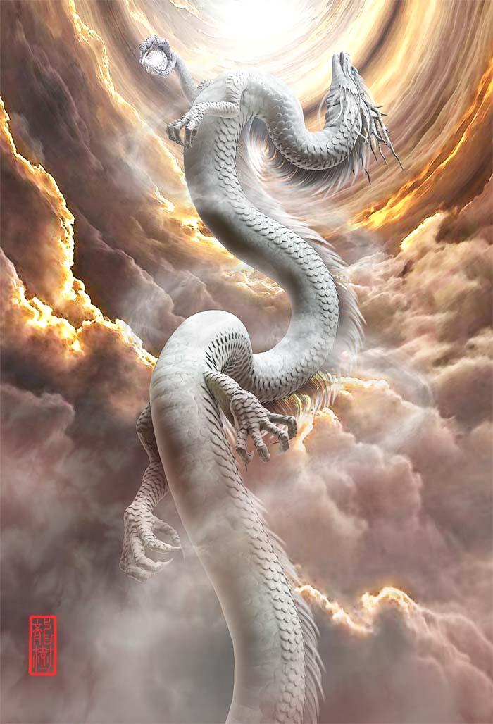 龍の絵「昇龍」