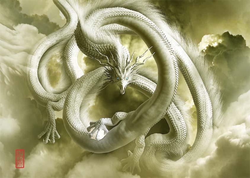 龍の絵 雲龍6
