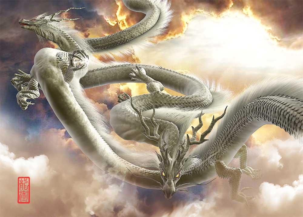 龍の絵 双龍