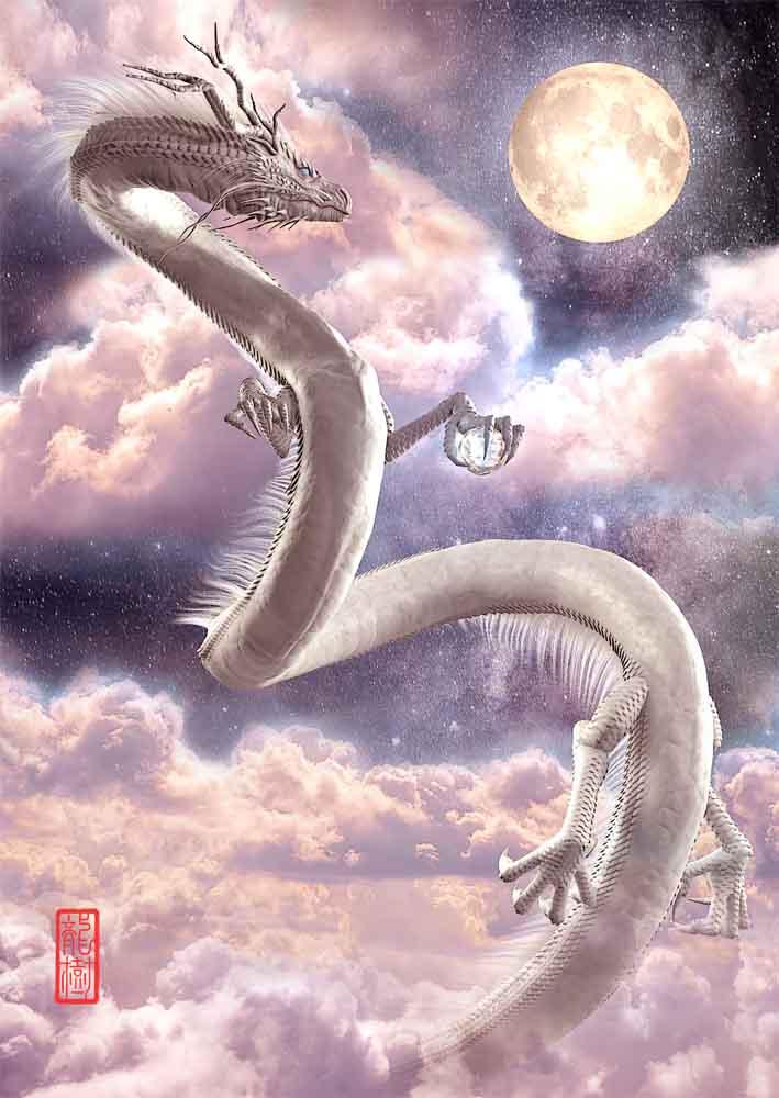 龍の絵、月下の白龍