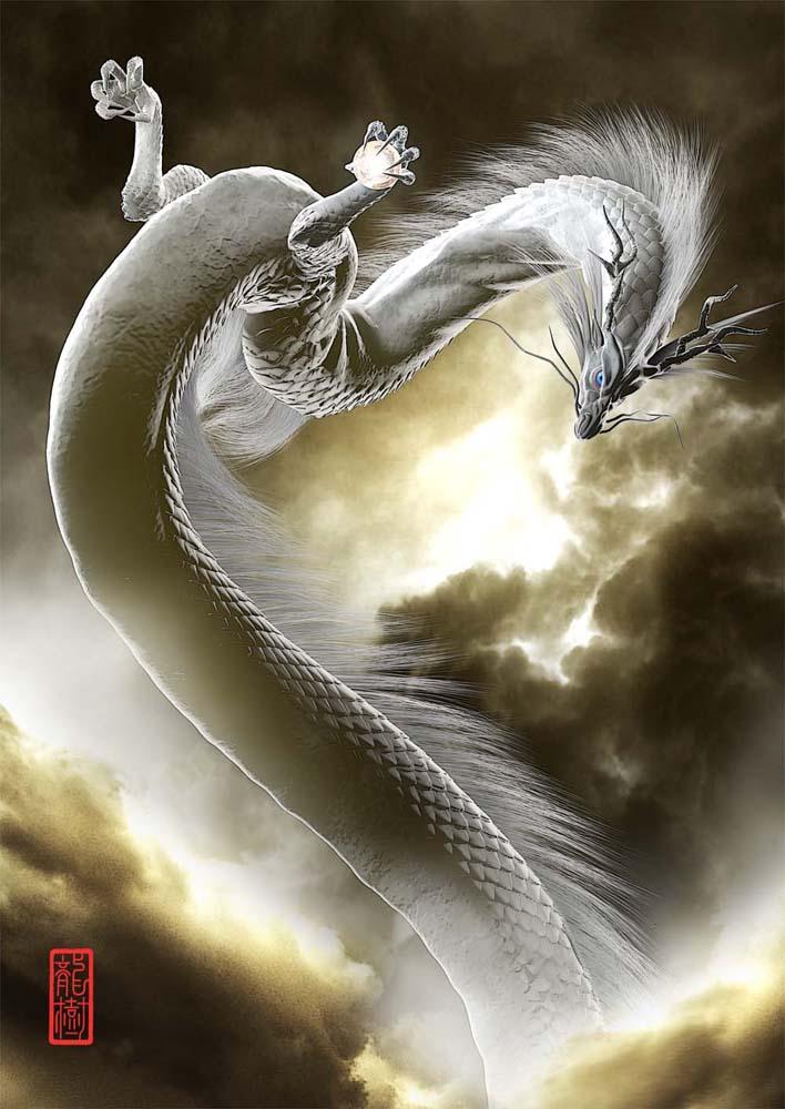 龍の絵「雲龍、白龍」