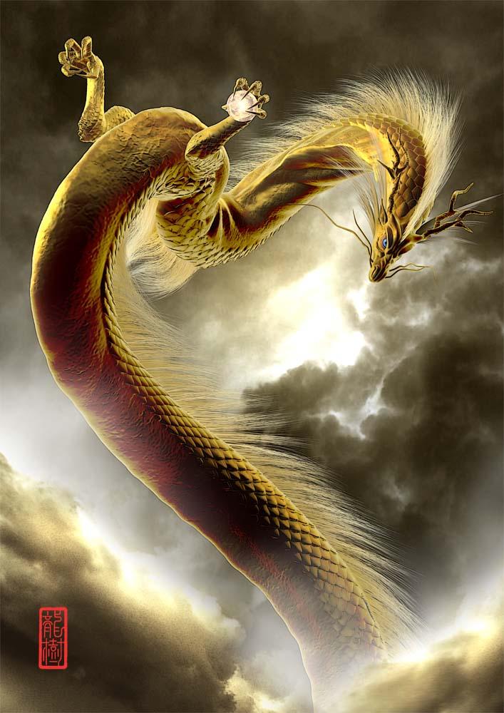 龍の絵 雲龍、金龍
