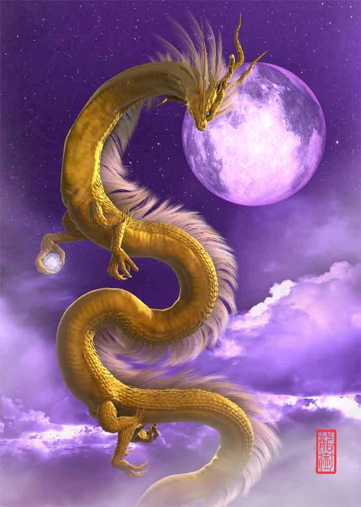 龍の絵 金龍