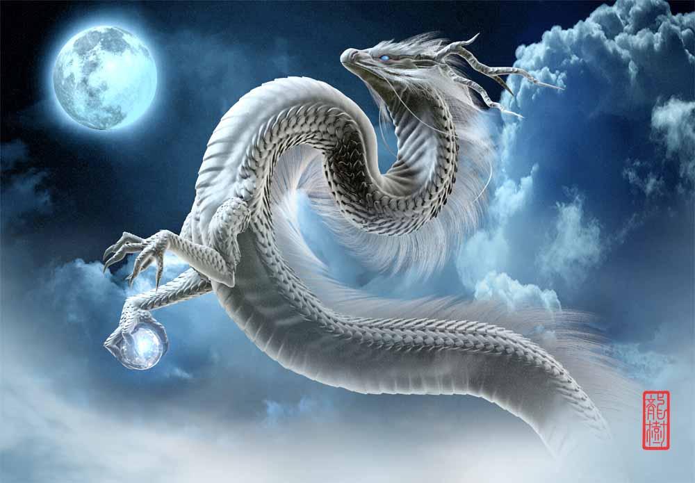 龍の絵 月夜の白龍
