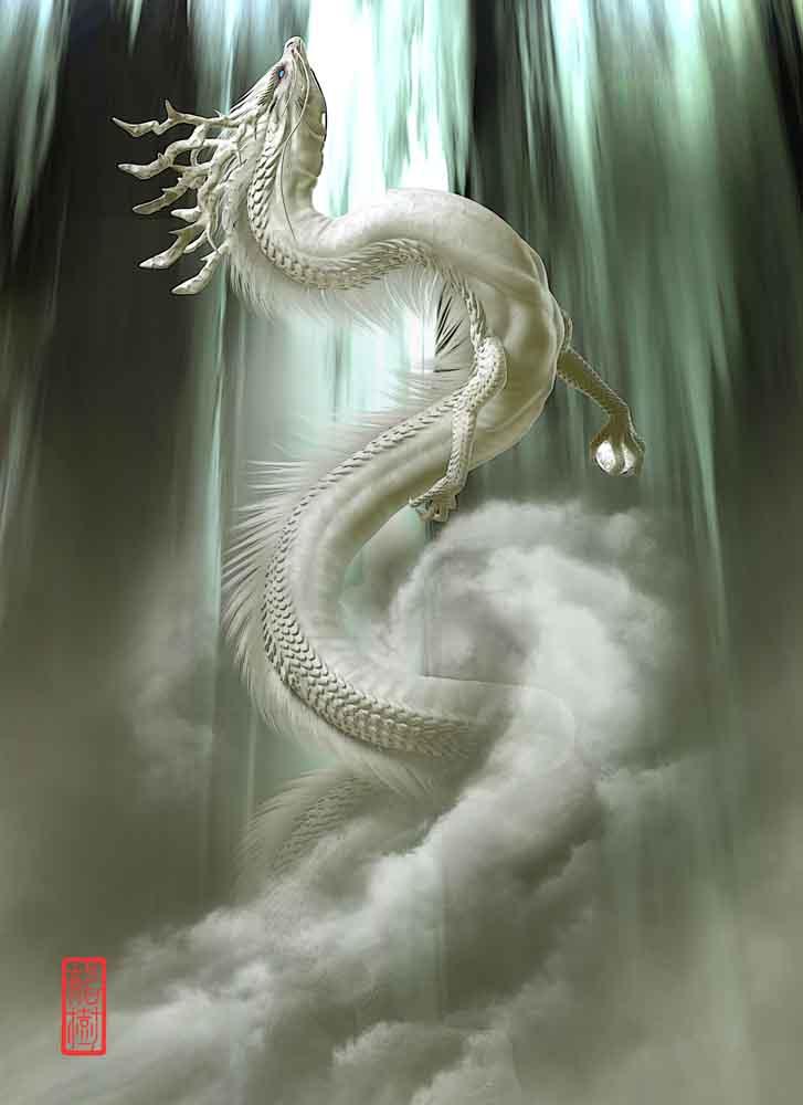 龍の絵 昇龍・白龍