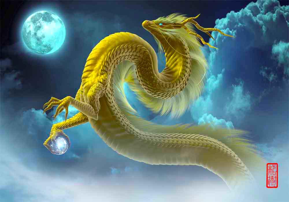 龍の絵 月夜の金龍